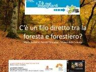 Presentazione dott.ssa Maria Bertolini - File .pdf 2.9 Mb - Museo ...
