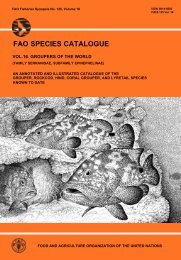 fao species catalogue vol. 16. groupers of the world - redmic