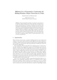Efficient Use of Geometric Constraints for Sliding-Window ... - europa