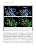 MIBE acts as antagonist ligand of both estrogen receptor α and ... - Page 6