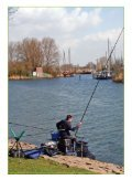 DISTRIBUITO da - oz-fish - Page 2
