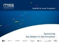 Sven Petzel - media sales & services GmbH
