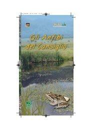Scarica la pubblicazione formato .pdf - Veneto Agricoltura