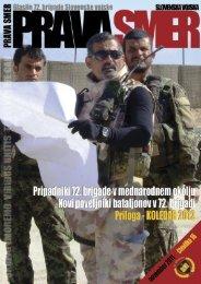 Profesionalno in profesionalizem ter tradicija - Slovenska vojska