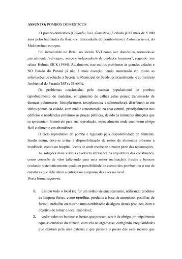 ASSUNTO: POMBOS DOMÉSTICOS O pombo ... - Rede Pró-Fauna