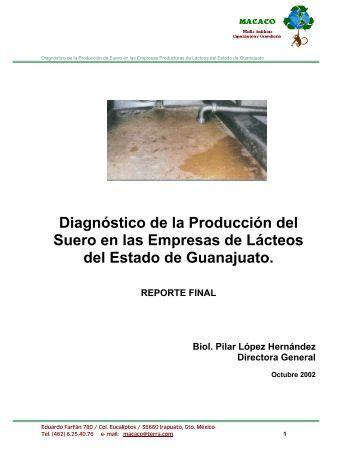 DOCS/DIAGNOSTICO DE LA PRODUCCION DE SUERO.pdf