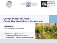 Quellgewässer der Rhön – Fauna, Biodiversität und Lebensraum