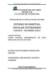 Ivan Felismino charas.pdf