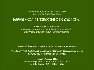 esperienza di tirocinio in croazia - Università degli studi di Udine
