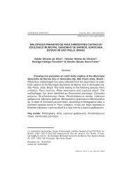 EyV vol. 11-2.pmd