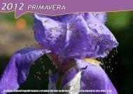 2012 PRIMAVERA - Le montagne divertenti