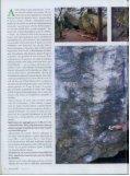 Adam Ondra le mani sulle pareti - archivioteca.it - Page 3