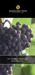 Badischer Wein Rebsortenbroschüre - Winzerverein Oberrotweil e.G.