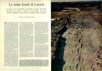 Le orme fossili di Laetoli - Kataweb