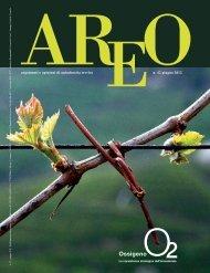 n. 42 giugno 2012 argomenti e opinioni di unindustria treviso