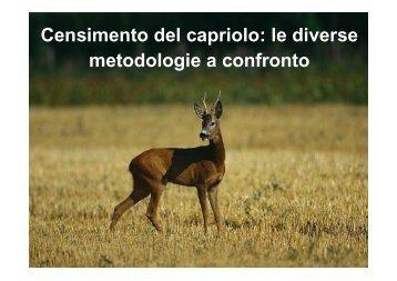 Censimento del capriolo - Regione Piemonte