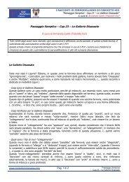 Cap.23 – Le Gallerie Disassate - Club Modellismo Pavese