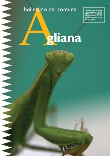 1) Gennaio 2010 - Comune di Agliana