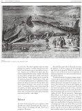 Cocodrils i balenes a les esglésies - Page 4