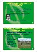 Relazione Veronelli - Page 4