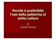Perché è preferibile l'uso della pettorina - Daniela Panozzo