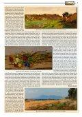 AAL-2011-11.pdf - Arte a Livorno - Page 5