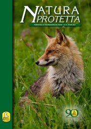 N° 14 2012 - Parco Nazionale d'Abruzzo Lazio e Molise