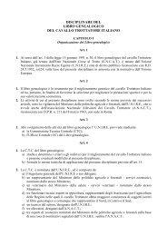 Disciplinare Libro Genealogico - Associazione Nazionale Allevatori ...