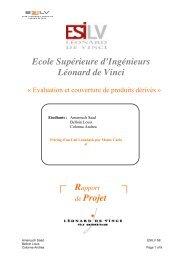 Ecole Supérieure d'Ingénieurs Léonard de Vinci de Projet