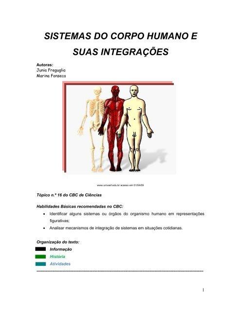 Origem e inserção da anatomia do sóleo