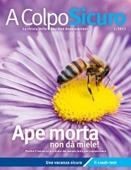 Edizione 01/2011 Ape morta non dà miele! - NummerSicher