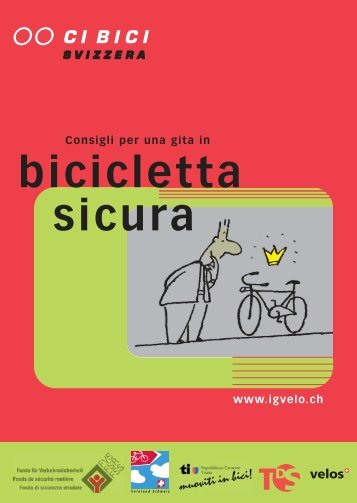 gita in bicicletta sicura - Pro Velo Schweiz