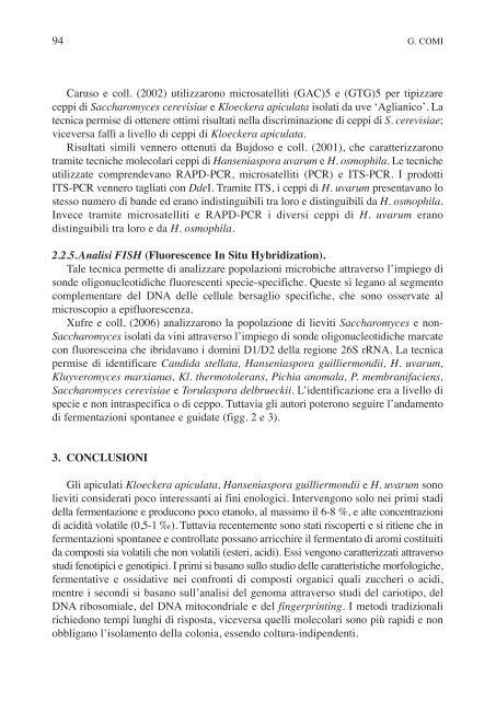 caratterizzazione fisiologica e molecolare di lieviti apiculati d ...