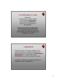 La Vinificazione in rosso.pdf - Iissmussomeli.it