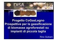 Presentazione progetto CoGasLegno