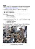 Tema brand i skibe - Søfartsstyrelsen - Page 7