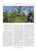 Alimentos ecológicos - Mercasa - Page 2