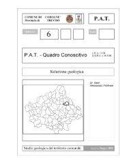 Relazione Geologica - Comune di Codognè