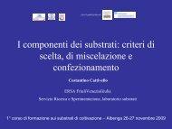 I componenti dei substrati - CeRSAA