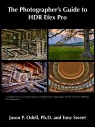The Photographer's Guide to HDR Efex Pro - Jason Odell