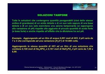 SOLUZIONI TAMPONE - gruppove.net