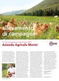 magazine - CuoreBio - Page 6