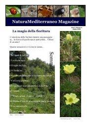 Magazine n.3 - Natura Mediterraneo
