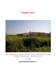 MARZU 2013 - alphonse doria