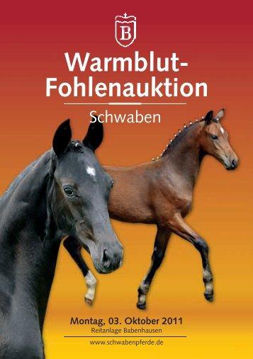 in babenhausen - Pferdezuchtverband Schwaben eV