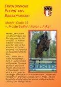 in babenhausen - Pferdezuchtverband Schwaben eV - Seite 2