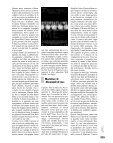 Il buono il brutto il cattivo del nuovo cinema italiano/2 - Page 2