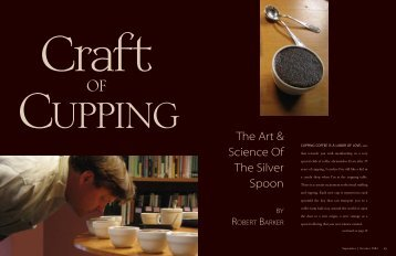 Craft of Cupping - Roast Magazine