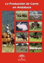 la producción de carne en andalucía - Junta de Andalucía