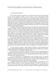 R. NISBET, I fitoliti nella ricerca paleoecologica e ... - BibAr
